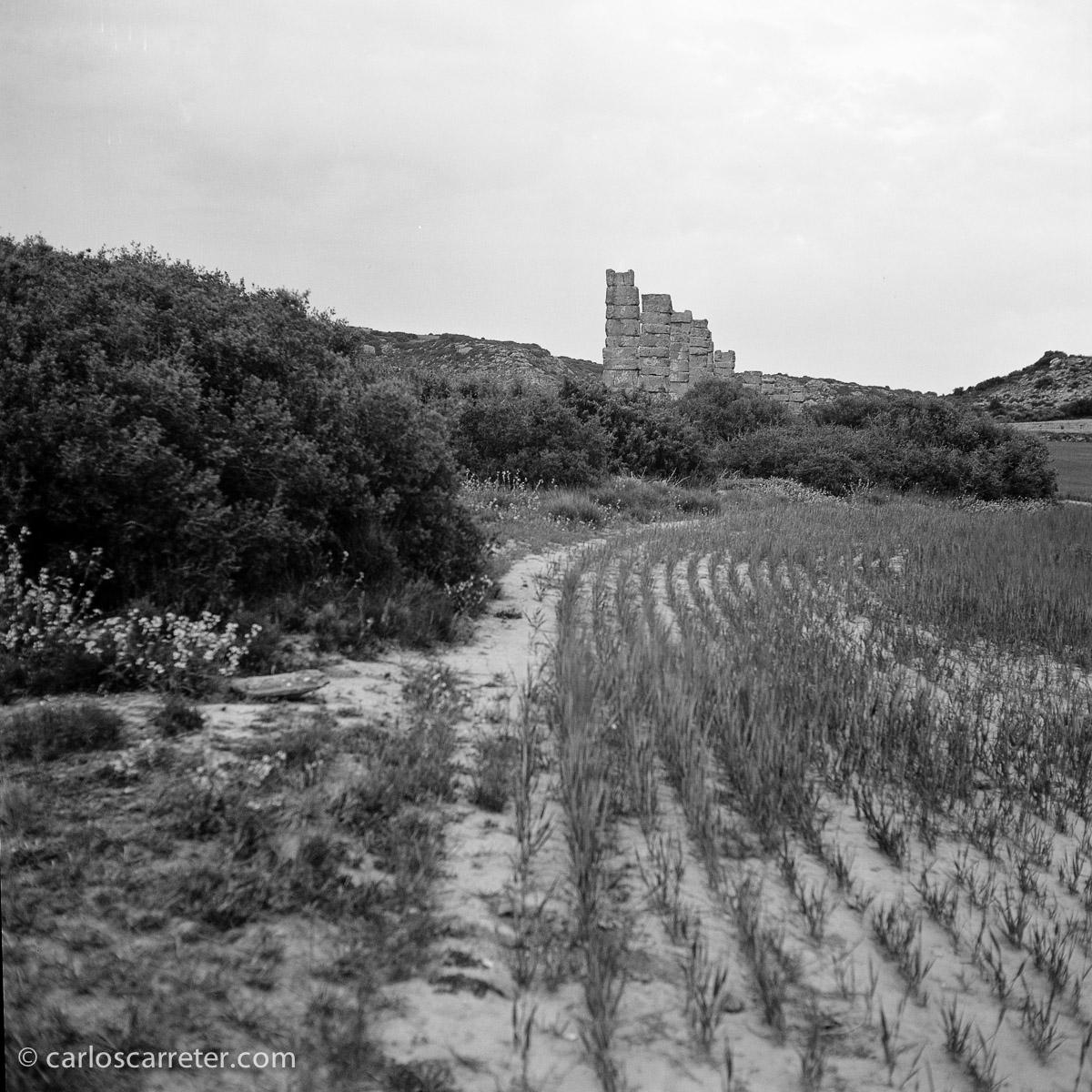 Acueducto romano del yacimiento arqueológico de Los Bañales. Fotografía tomada con la Yashica Mat 124G sobre negativo en blanco y negro cromogénico.