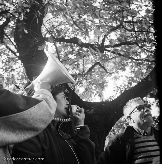 Homenaje a un roble centenario en el Canal Imperial de Aragón a su paso por Zaragoza. Fotografía tomada con la Zeiss Ikon Ikonta b sobre negativo en blanco y negro cromogénico.