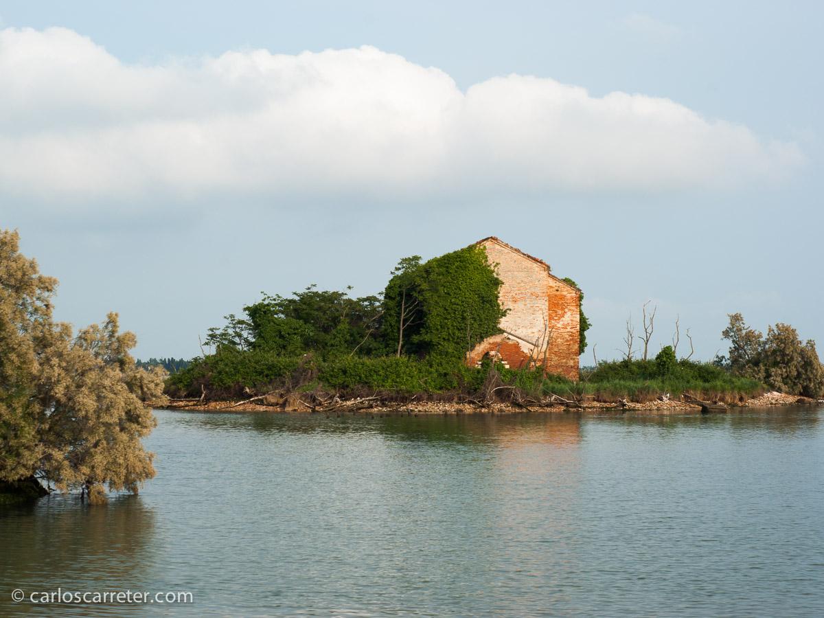 2008 - Laguna Veneta (Italia)