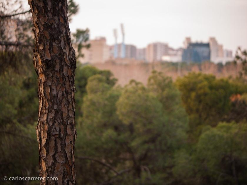 Mi forma de fotografiar la ciudad (tema del Réponses Photo que comento hoy) es calmada, soy introvertido. Tímido incluso. Siempre pongo cierta distancia.