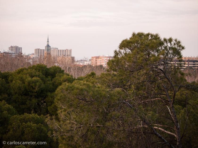 A caballo entre la naturaleza y la ciudad, el Parque Grande de Zaragoza, siempre se puede ver de distintas formas y con distintas luces.
