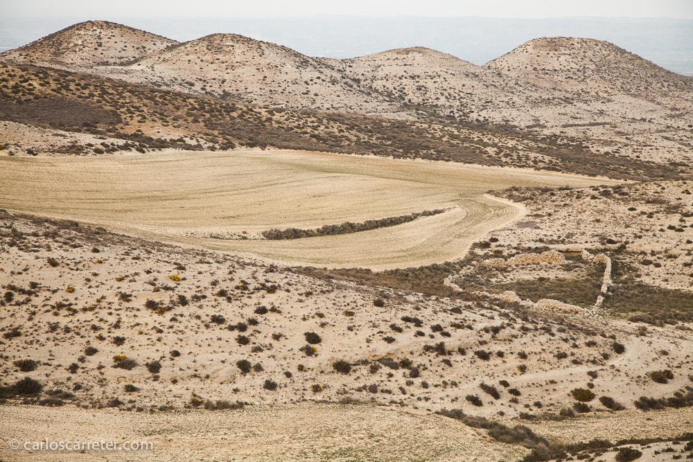 Fuera del valle fértil, los montes que nos rodean son áridos, con abundancia de piedra caliza y yesos.