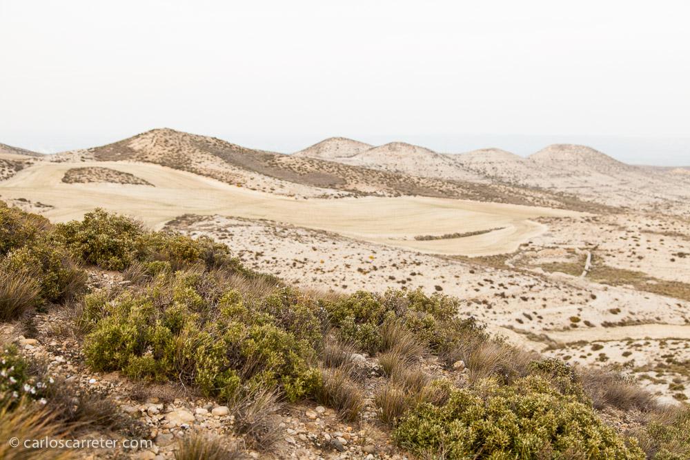 No hay que perder de vista las posibilidades que ofrece el árido paisaje de la margen derecha del valle del Ebro.