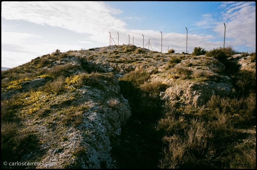 En el cabezo donde se encuentra el yacimiento arqueológico íberorromano.