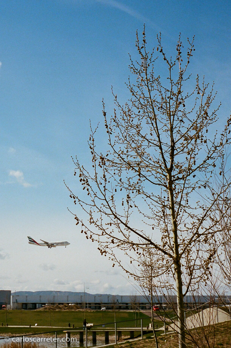 Aterriza de un jumbo de cargo en el cercano aeropuerto de Zaragoza.
