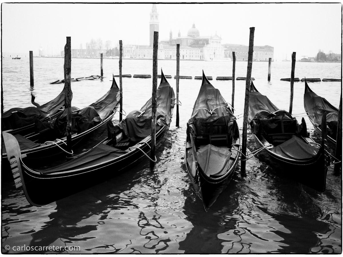 Estos días estoy con la versión de prueba de la Nik Collection, especialmente son Silver Efex, para convertir fotografías a blanco y negro. Todavía no sé si me convence, porque no sé si me merece la pena gastar en esto. Pero os dejo algunas pruebas con fotografías de Venecia. Como la clásicas góndolas ante San Giorgio Maggiore.