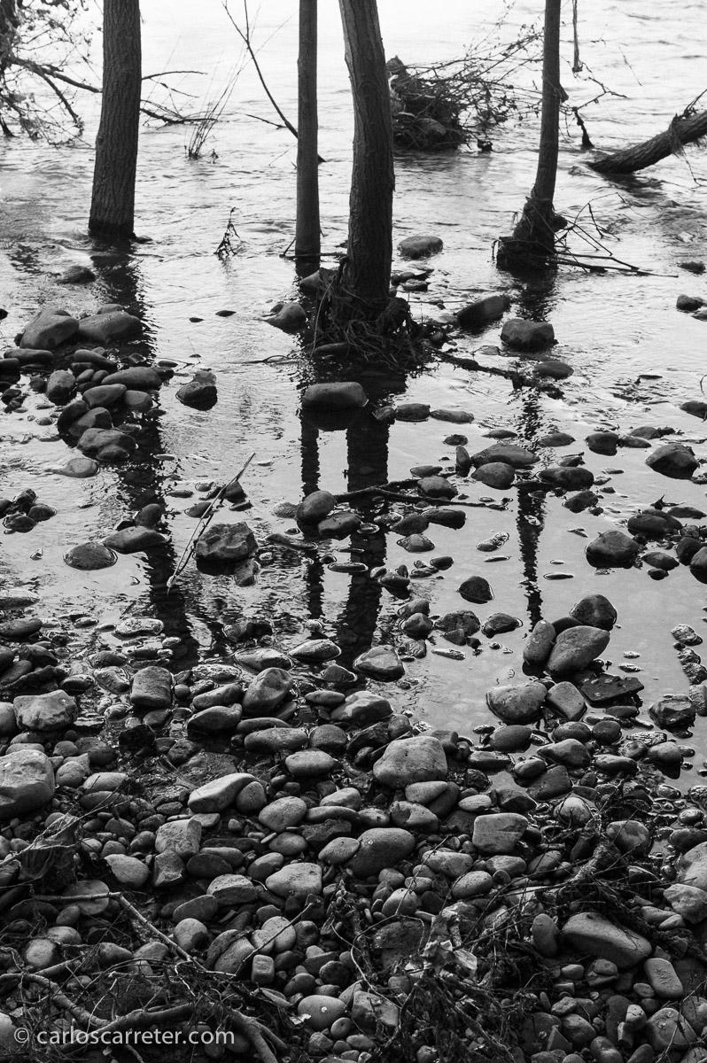 De momento, he convertido pocas fotografías de la M-E a blanco y negro, pero estos cantos rodados bajo el puente de Hierro del Ebro en Zaragoza me parecieron un motivo apropiado.