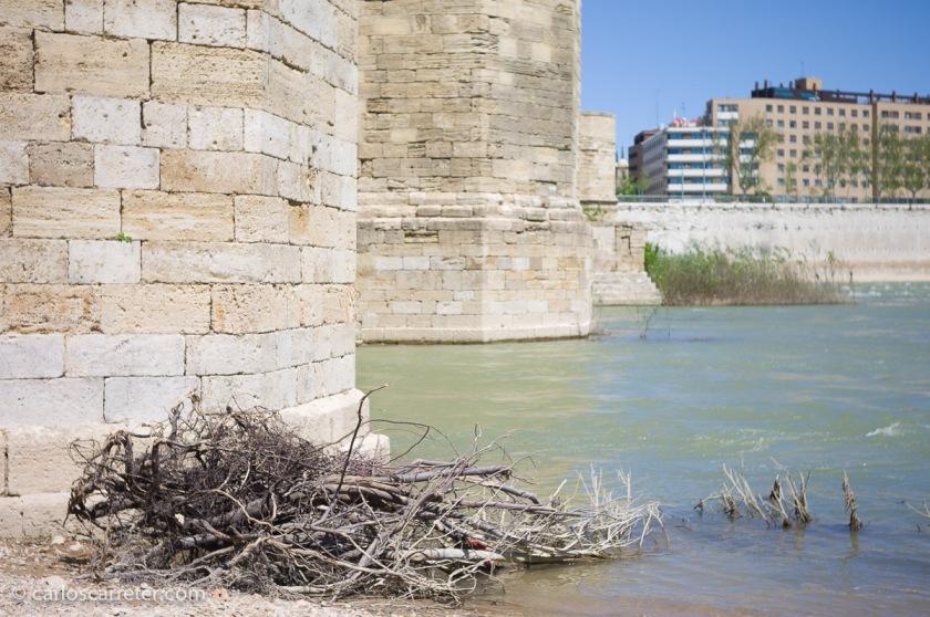 A plena, aunque discreta, apertura, el rendimiento global del modesto y pequeño Elmar es razonable y agradable. Puente de Piedra, Zaragoza.