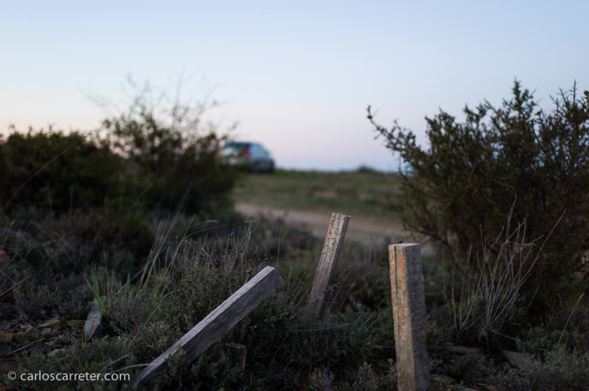 Cuando la luz se va, y hay que afinar el enfoque en condiciones poco propicias. Paisaje cerca de Montalbán, provincia de Teruel.