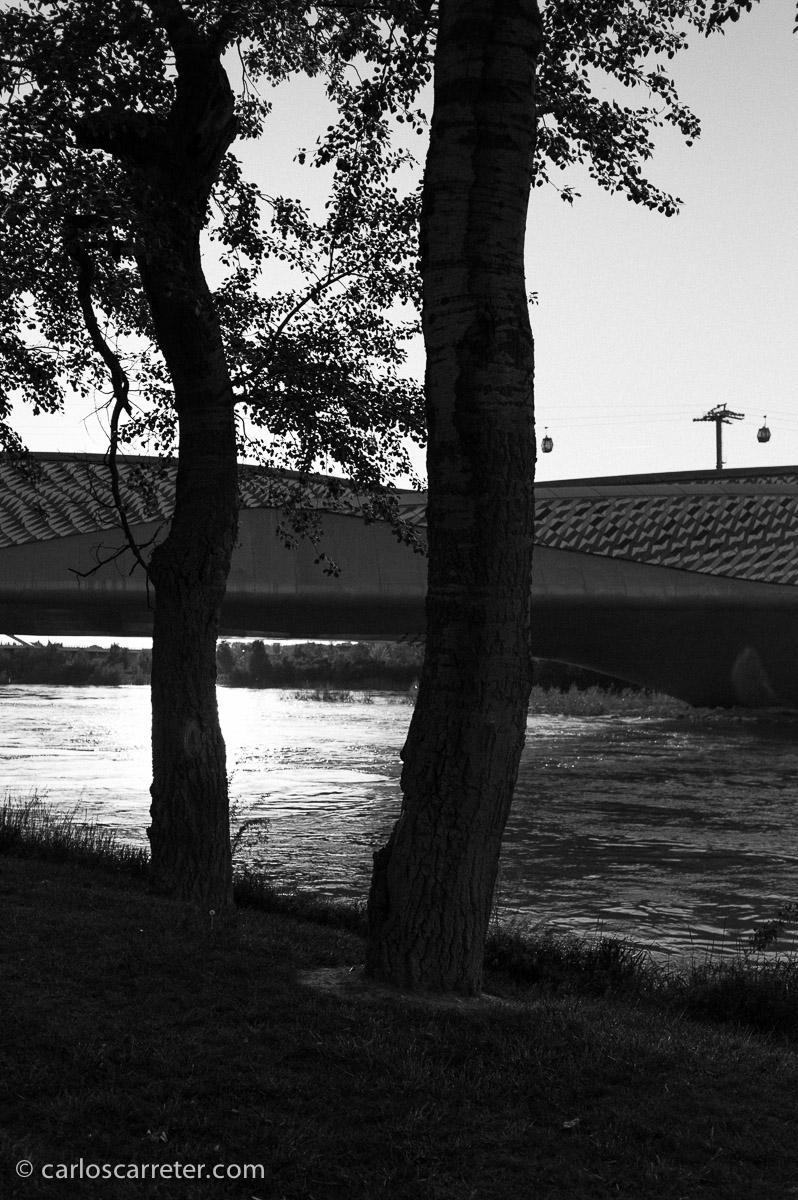 Si ayer mostraba las imágenes en blanco y negro tomadas en el antiguo soto de la Almozara con un carrete de película en blanco y negro, hoy traigo alguna a partir de los archivos de una cámara digital.