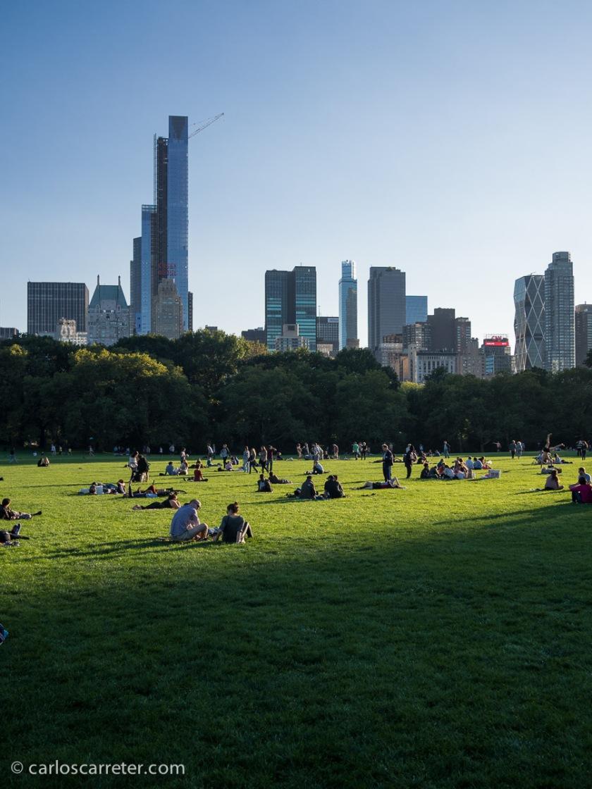 Y sería incapaz de recordar en qué serie que transcurra en Nueva York no aperece Central Park en un momento dado. Otro clásico.