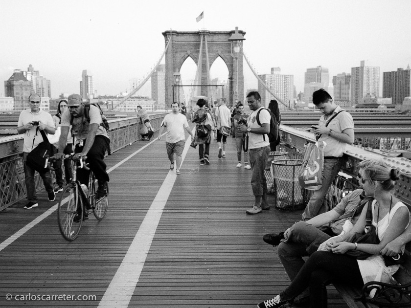 Y cámaras analógicas, una que me llevé, y otra que me compré allí, una Fuji GS645S Wide 60, con la que hice esta fotografía del puente de Brooklyn.