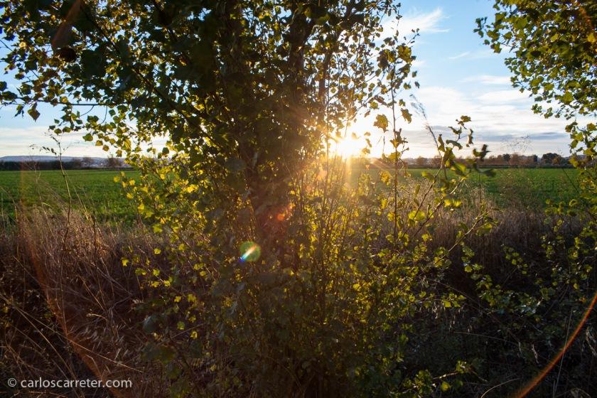 Noviembre - Comienza el ocaso del año, en esta ocasión en Cantalobos, esperemos que para bien.