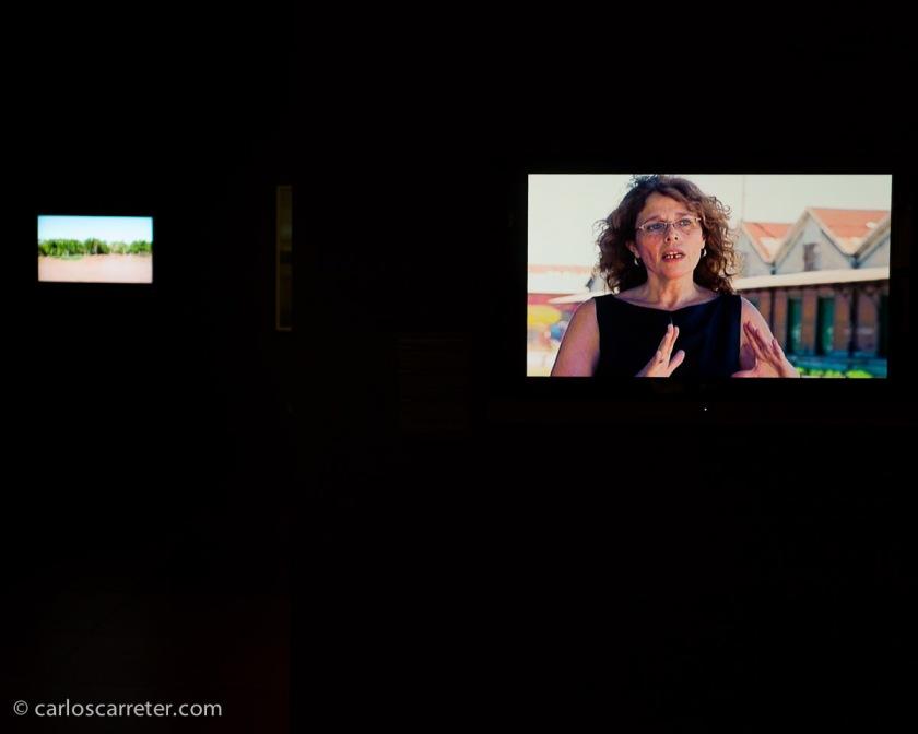 Abundancia de material audiovisual que explica distintos avatares del viaje, claro está.