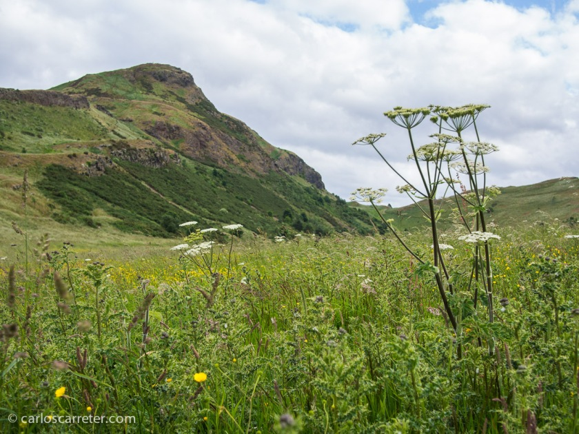 "Esta ""montaña solitaria"" está en Holyrood Park al lado de Edimburgo... pero nos tendrá que valer en este momento."