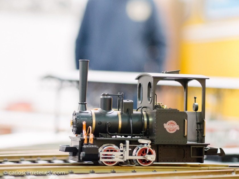 """Escurridiza esta pequeña locomotora a escala, hasta que el """"conductor"""" la paró un rato para poder hacerle unas fotos."""