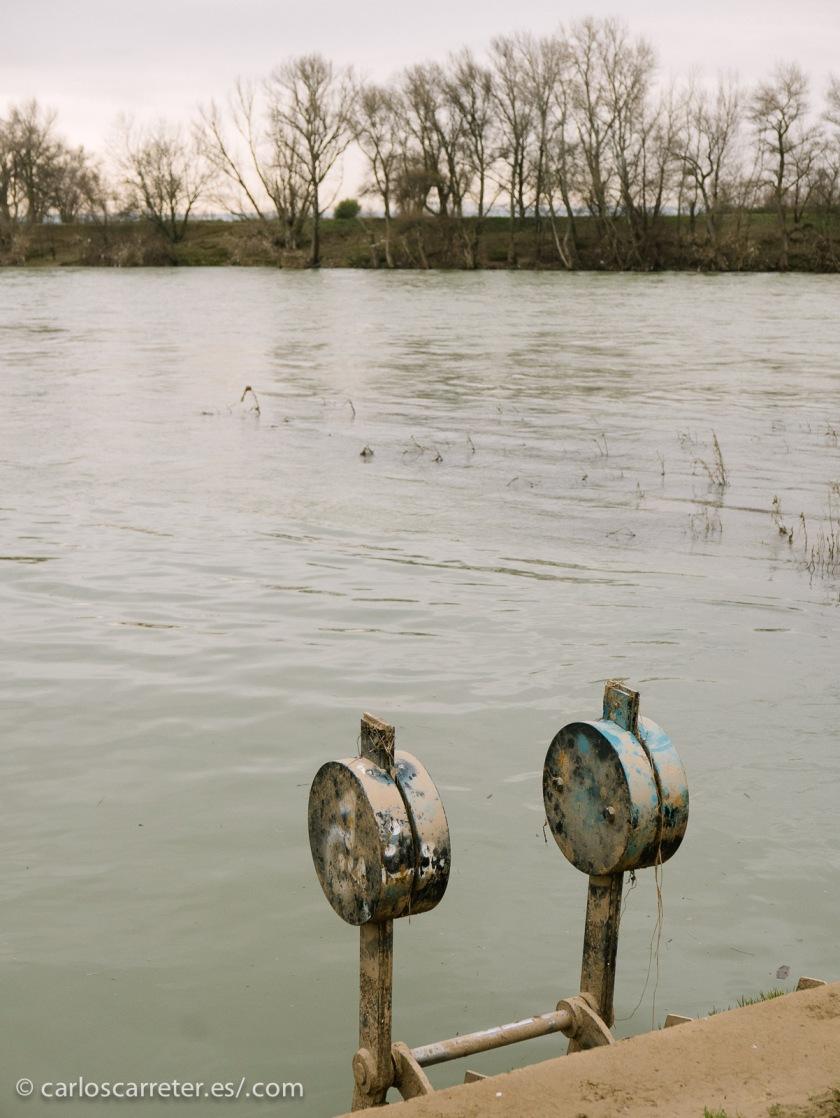 Incluso una sucesión casi ininterrumpida de avenidas está afectando al río Ebro a su paso por Zaragoza.