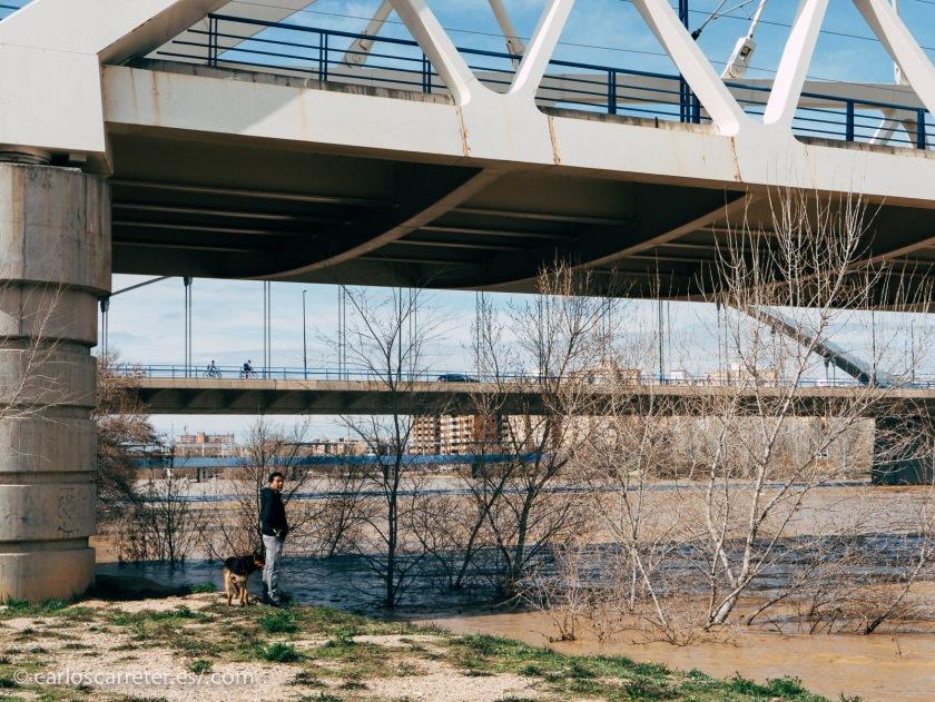 La naturaleza es bella pero también es dura y puede ser cruel. Estamos viviendo en estos días en Zaragoza la tremenda avenida del río Ebro, como hacía muchísimo tiempo que no se veía.