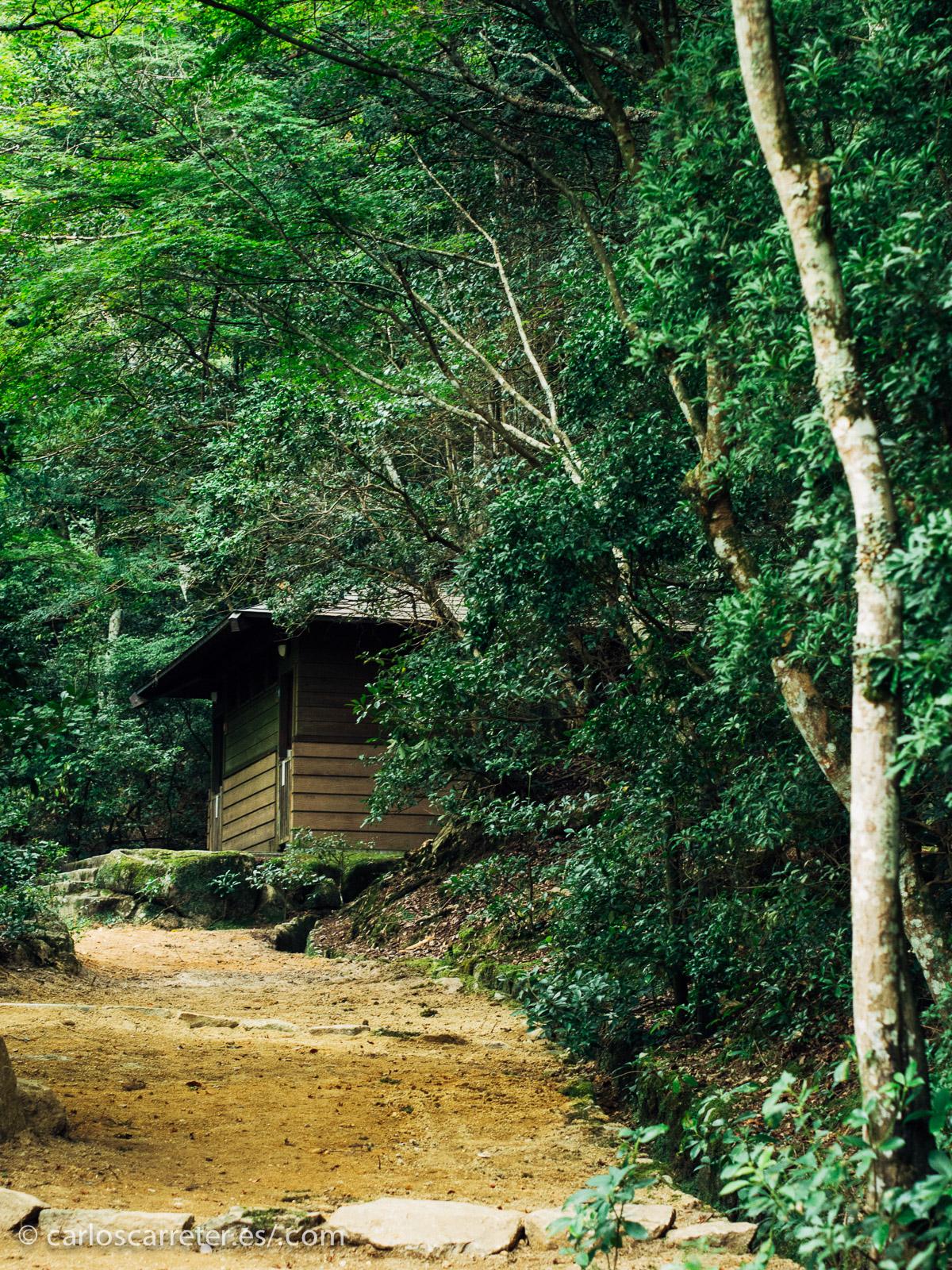 Mi experiencia en islas japonesas está algo más al norte que la que sale en la película, la bella isla de Miyajima.