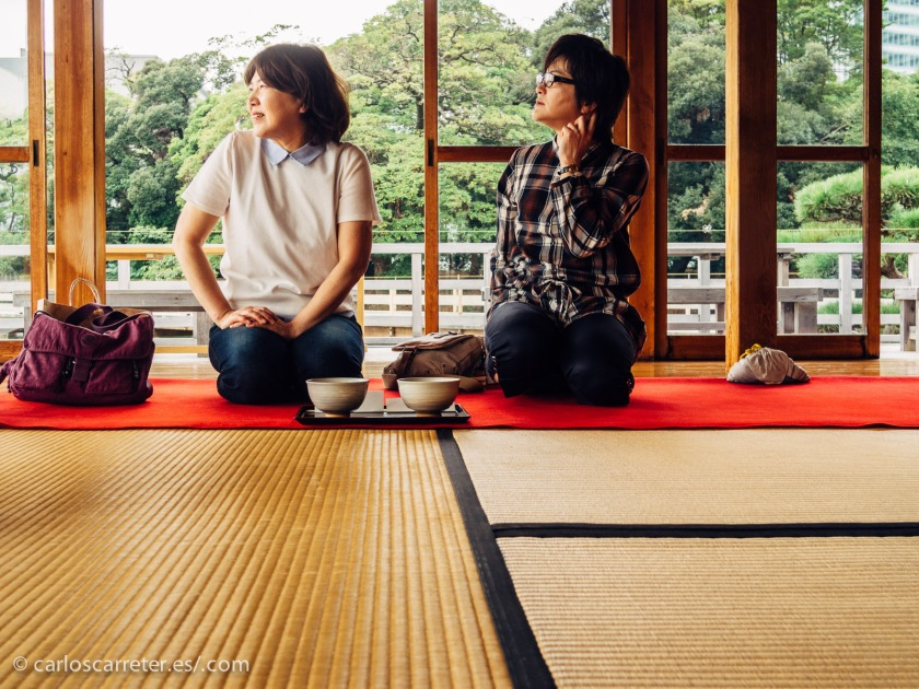 Por ello, para intentar recuperar algo del ambiente de la antigua Edo en la actualidad, os traigo estas fotografías de los jardines de Hamarikyu, con su coqueta casa de té en el lago principal de los jardines.