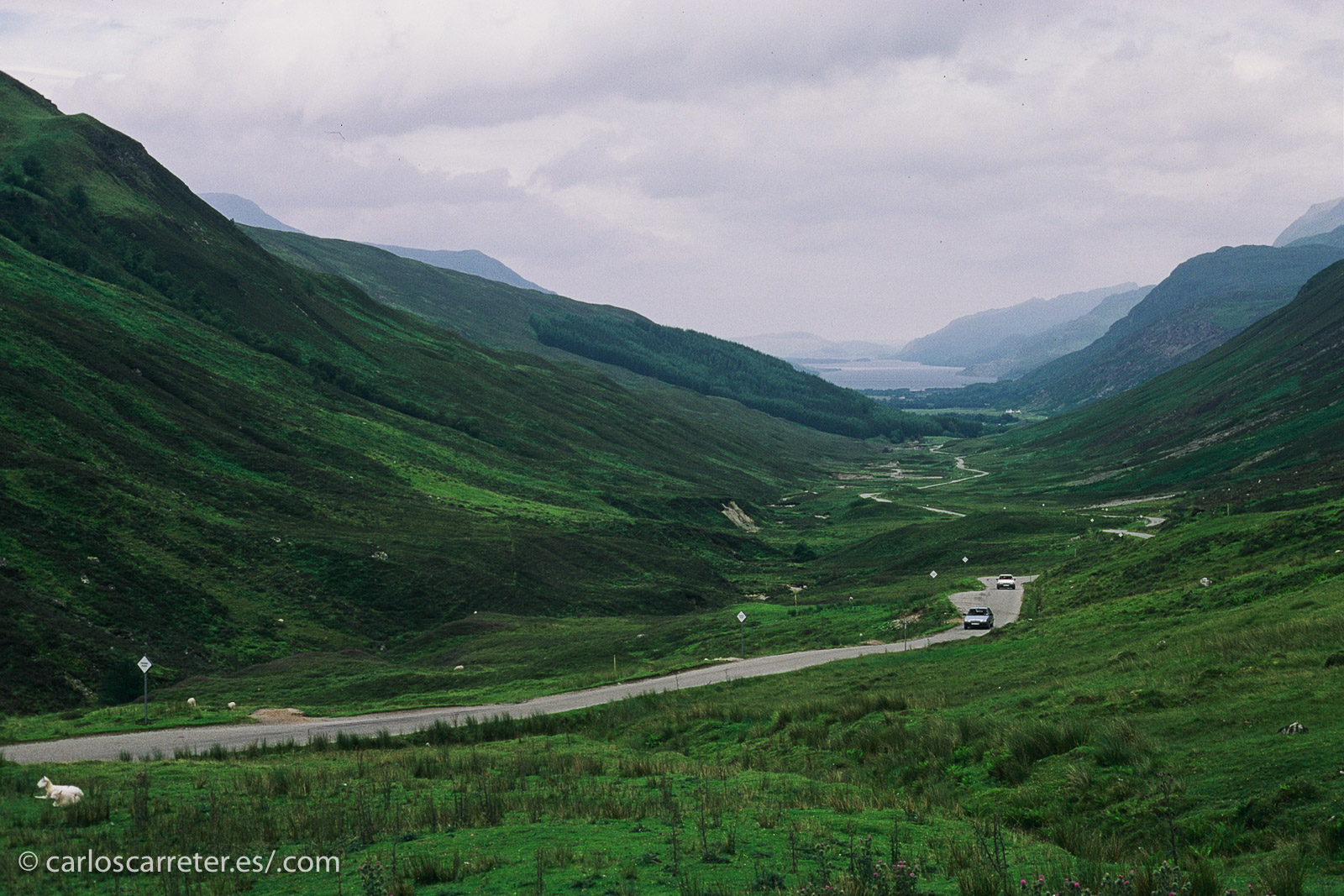 Hoy, como ayer, seguimos por los glens de las Highlands, tierra dura pero hermosa.