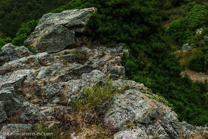 Aunque en muchas ocasiones lo haga al nivel de lo infinitamente pequeño y no al de estos hermosos paisajes de la sierra de Algairén en Aragón.