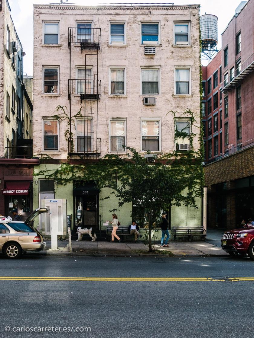 Esta es una de esas series en las que Nueva York se cuela como un protagonista más, casi de rondón, pero imprescindible.