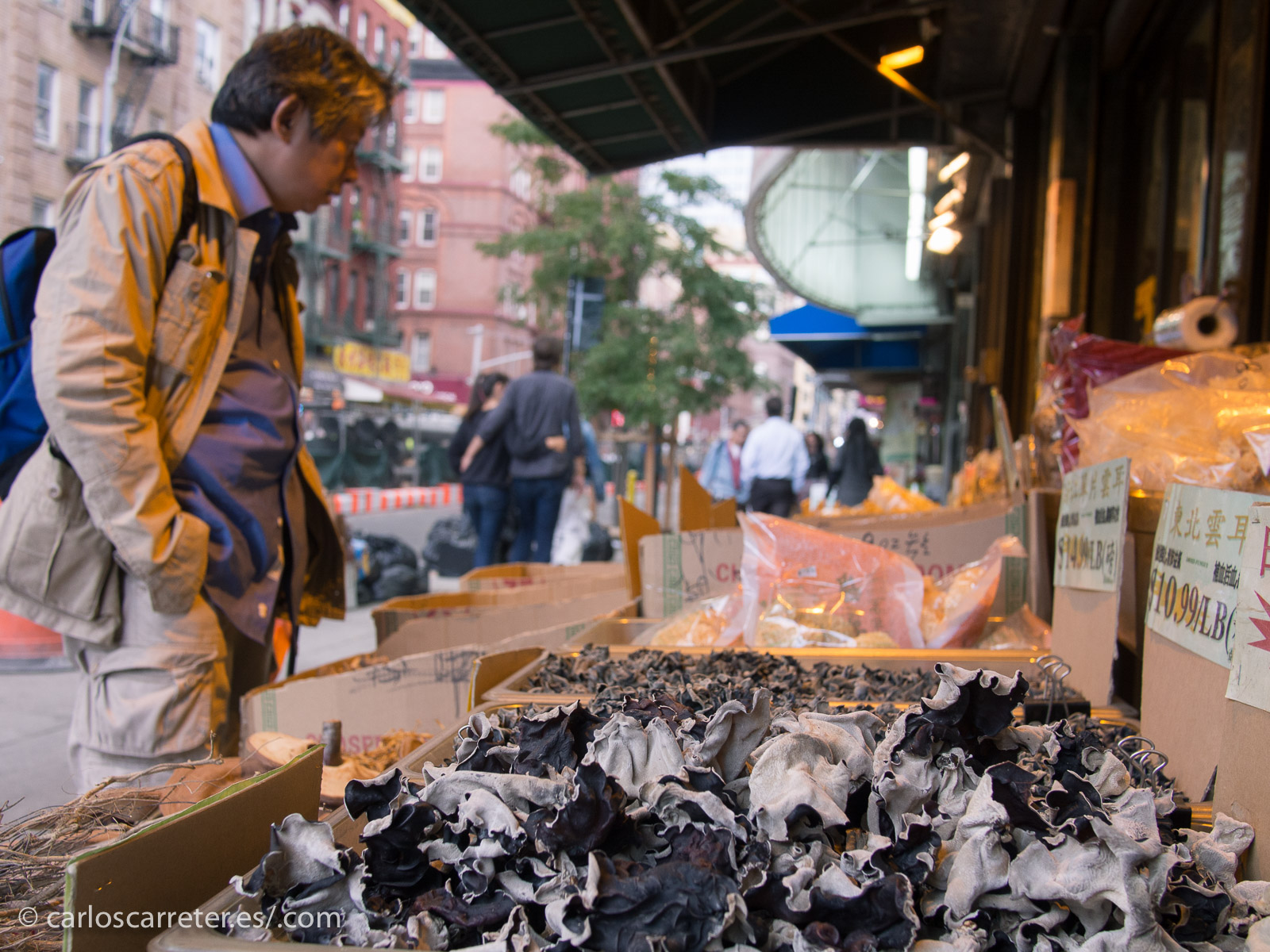 2013. Nueva York, Estados Unidos. carloscarreter.com | Tumblr | Twitter | Facebook
