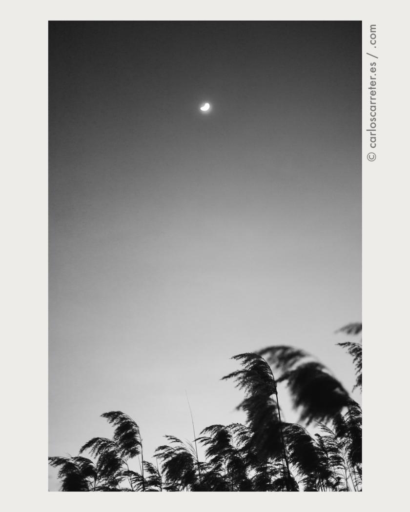 La luna, la principal protagonista de esta historia de anticipación científica y ficción política.