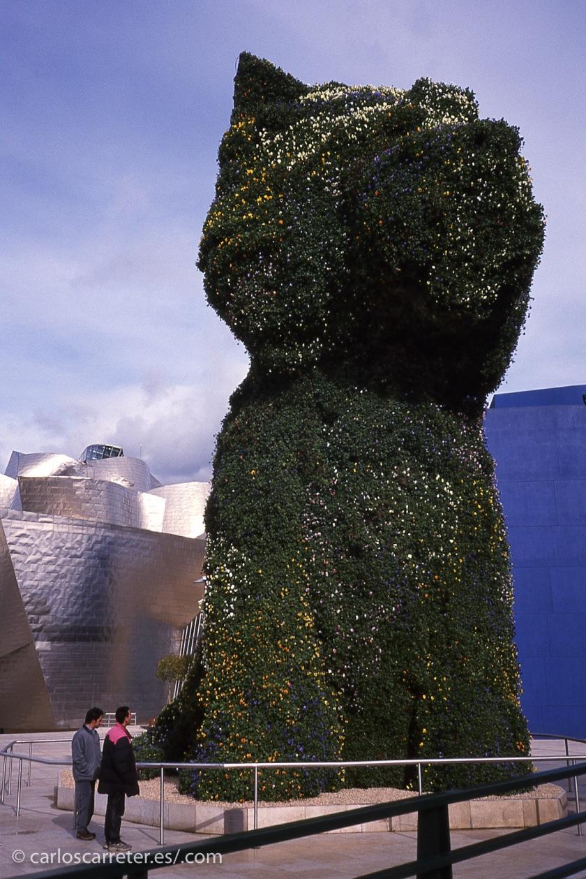 O podemos acercarnos a visitar el museo Guggenheim en Bilbao. Estas fotografías corresponden a los años 2000 y 2001.