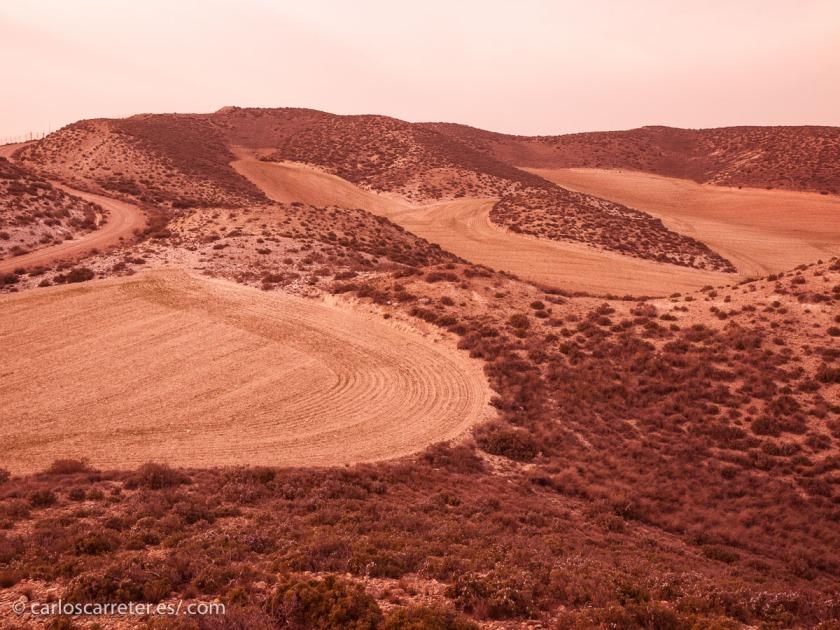 ... no es difícil imaginar en nuestras áridas tierras de Aragón los paisajes marcianos.