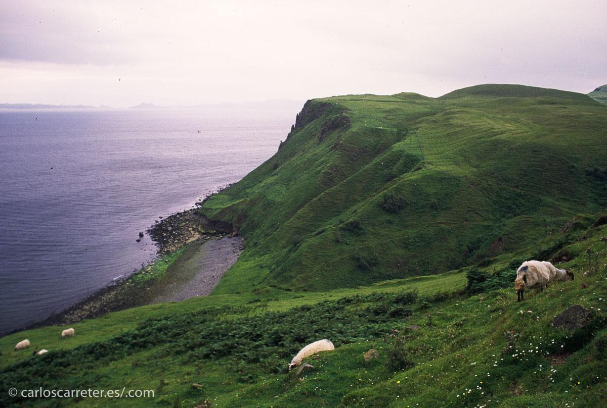 De las localizaciones que he visitado, o he estado en las cercanías, que salen en The Force Awakens, puedo elegir entre Escocia e Irlanda.
