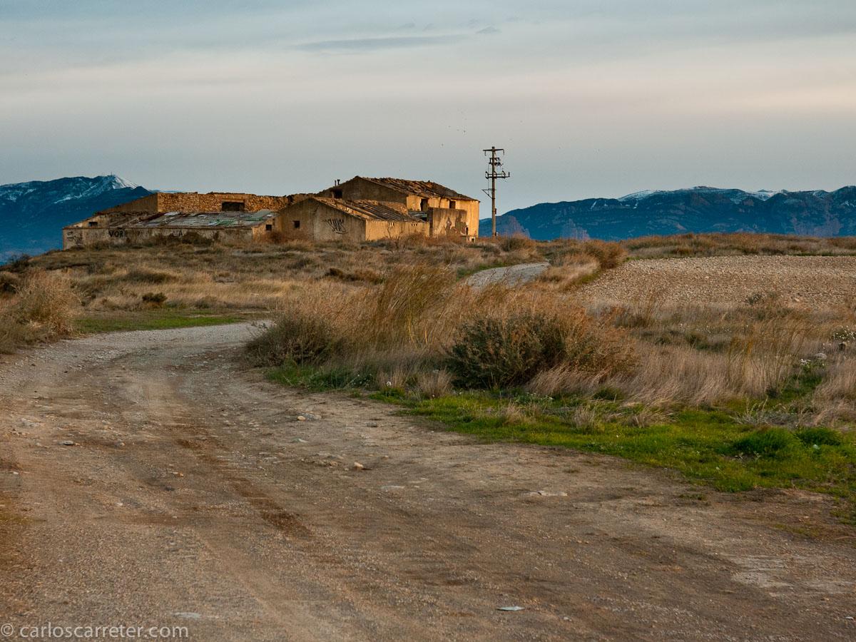 Ciertamente, aunque las secas estepas aragonesas son en ocasiones menospreciadas paisajíticamente, comparadas con los verdes campos y bosques de otras latitudes, yo creo que pueden ser muy bellos.