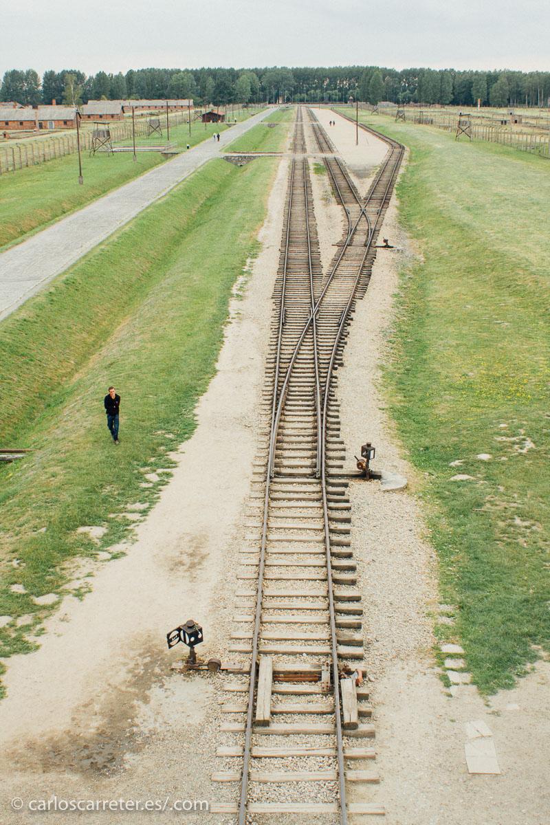 El cine y la televisión nos han familiarizado con las vías ferroviarias que llegaban al campo de Auschwitz-Birkenau, situado en un discreto y apartado lugar al sur de Polonia, no lejos de Cracovia.