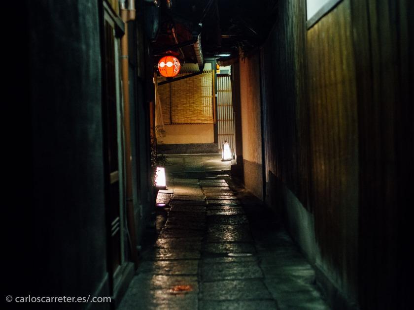 Hay personas que confunden en Japón a las geishas, como las del distrito de Gion en Kioto, con las prostitutas, o cortesanas como las denominan en este libro.