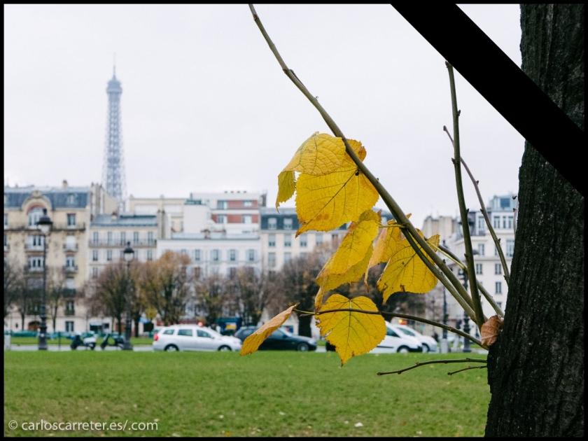Un París que se ha vuelto prácticamente invivible e irrespirable... en el que es difícil pasear por sus bellos parques.
