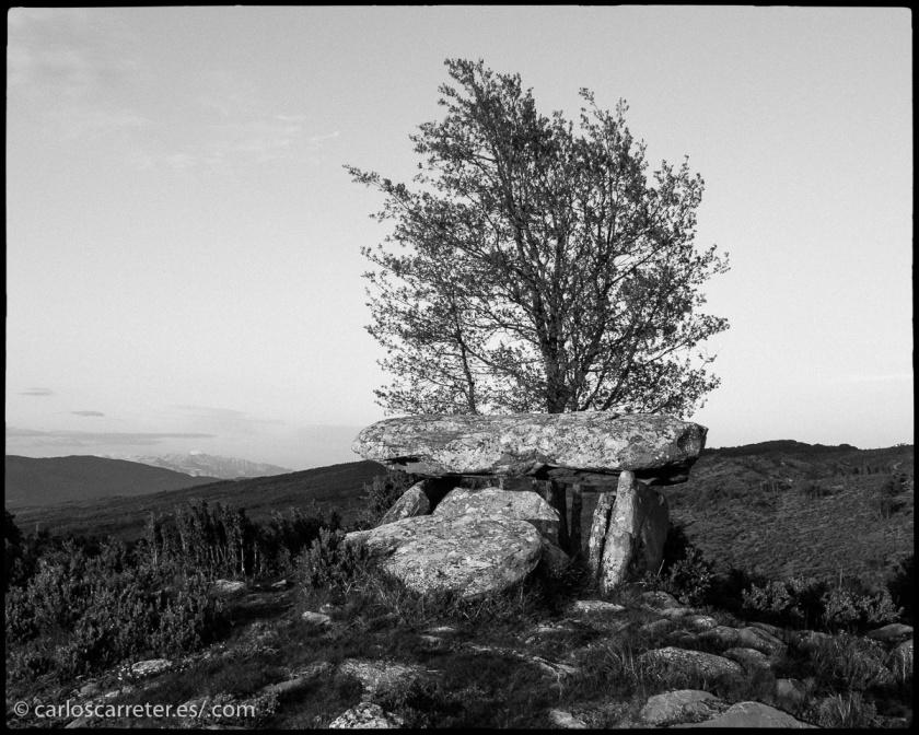 Y pasear por los tranquilos parajes de las sierras avanzadas de los Pirineos, junto al dolmen de Ibirque, en Aragón (España).