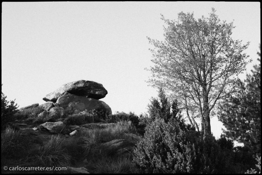También paseé por Aragón, y visité el dolmen de Ibirque en las sierras prepirenaicas.