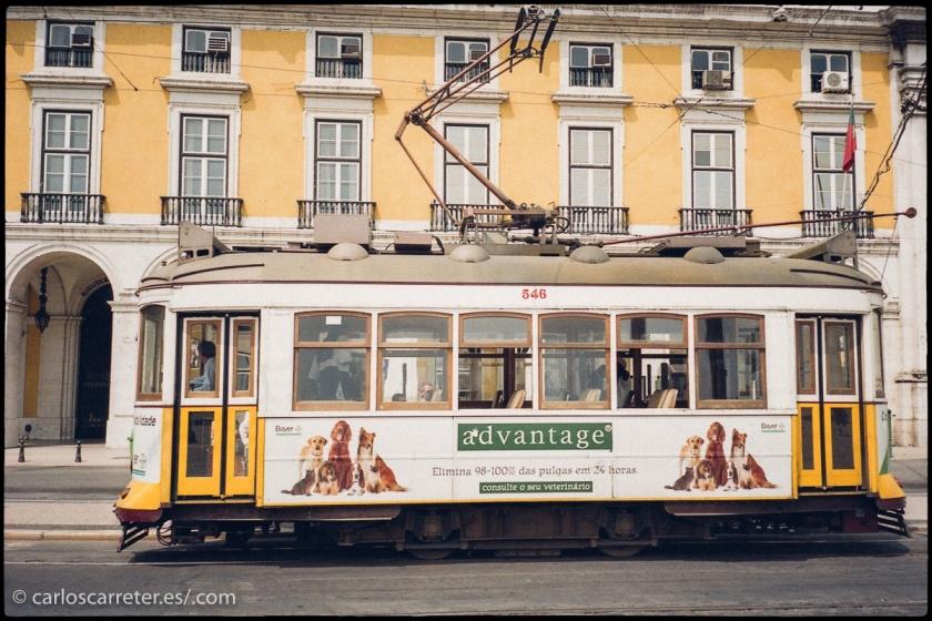 Aunque también podemos coger el tranvía para recorrer Lisboa.