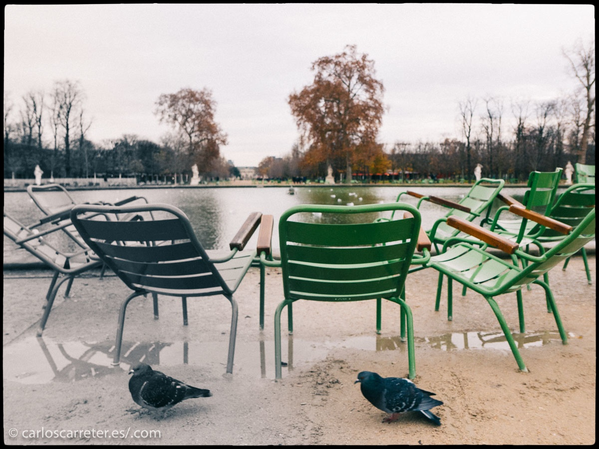 No en su totalidad, pero la mayor parte de la novela transcurre en las calles y los suburbios parisinos,... y allí me voy fotográficamente, entre la luz y los colores de la ciudad cosmopolita y la nostalgia de la ciudad milenaria.