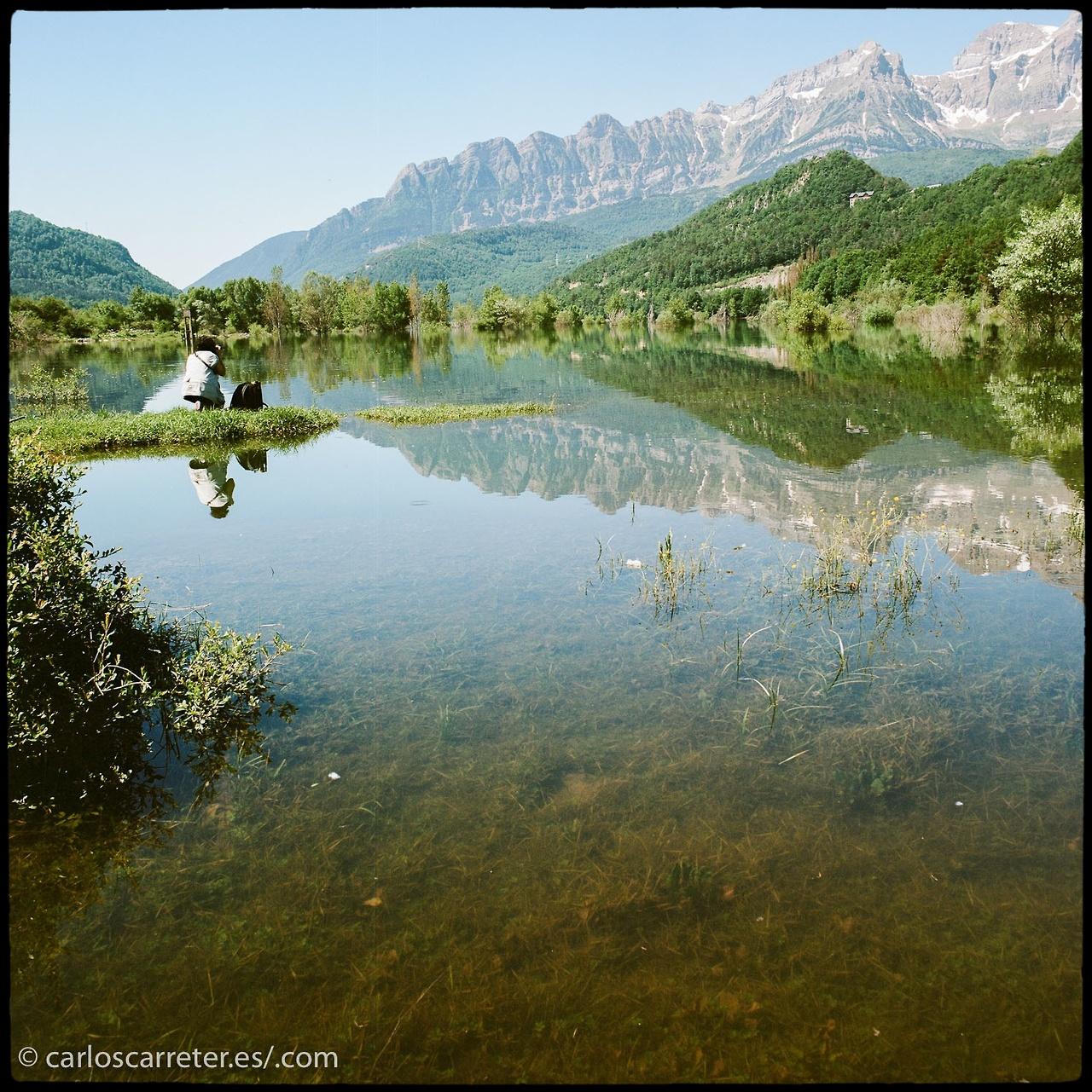 ... o los paisajes de los Pirineos en verano, Aragón (España).